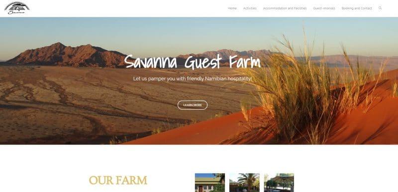 portfolio-savanna